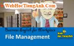 Tình huống 53: Quản lý hồ sơ - Tiếng Anh công sở (Việt - Anh)