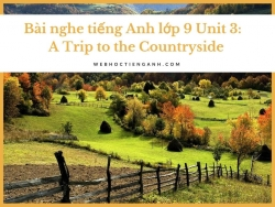 Bài nghe tiếng Anh lớp 9 Unit 3:  A Trip to the Countryside