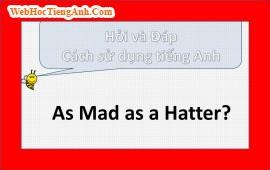 As mad as a hatter có nghĩa là gì?
