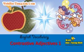 Học từ vựng bằng hình ảnh: Tính từ đối lập 1 (Contrastive Adjectives 1)