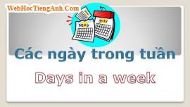 Học từ vựng bằng hình ảnh: Các ngày trong tuần (Days of Week)