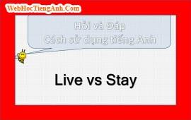 Live và Stay có gì khác nhau?