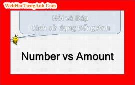 Number và Amount?