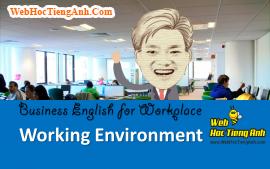 Tình huống 49: Môi trường làm việc - Tiếng Anh công sở (Việt - Anh)