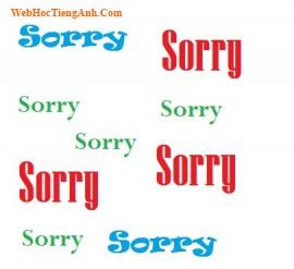 Tình huống 80: Xin lỗi – Tiếng Anh thương mại (Anh-Việt)