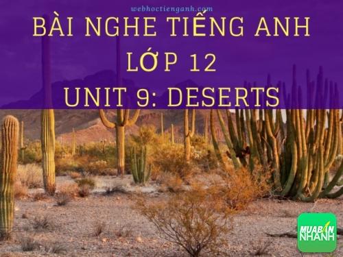Bài nghe tiếng Anh lớp 12 Unit 9: Deserts