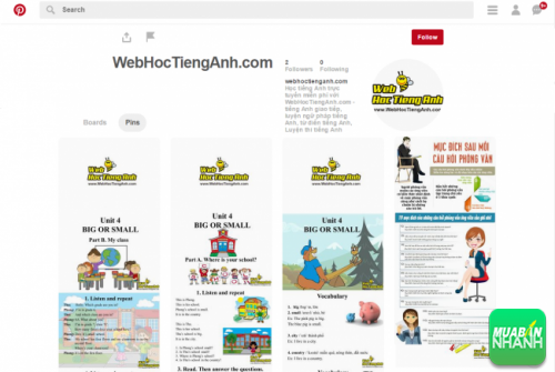 Pinterest WebHocTiengAnh - Bee Learn English