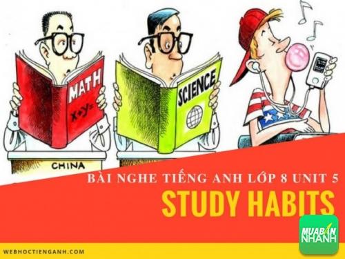 Bài nghe tiếng Anh lớp 8 Unit 5: Study Habits
