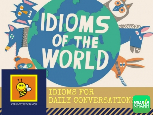 Học Thành ngữ tiếng Anh qua những đoạn hội thoại - Idioms for Daily Conversations